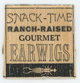 Snack-Time Ranch-Raised Gourmet Earwigs. Zephyrus Image